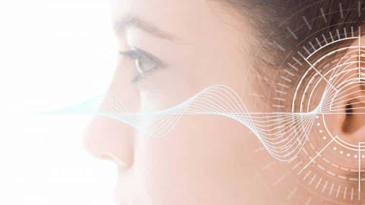 Hearing Aid Technology
